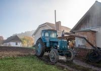 Трактор Т-40АМ. Тернопольская область, Теребовлянский район, с. Кровинка