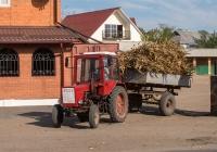 """Трактор Т-25А1 """"Владимирец"""" с одноосным прицепом на перевозке силоса. Винницкая область, Бершадский район,  с. Джулинка"""