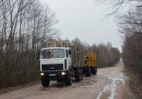 Автопоезд-сортиментовоз с тягачом МАЗ-631708-1364 на перевозке лесоматериалов. #АА 6433 АЕ. Украина, Житомирская область, близ с. Игнатполь