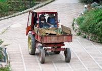 Самоходное шасси СШ-2540 на осенних работах в саду. Крым, Никитский ботанический сад