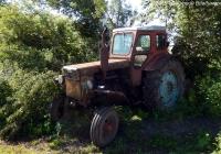 Трактор Т-40М. Орловская область, Кромской район, д. Большая Колчёва