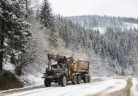 Автомобиль-лесовоз Урал-43204 c гидроманипулятором . Львовская область, с. Тернавка