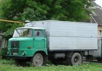 Фургон на шасси IFA W50L #Т 771 ОЕ 93. Белгородская область, Красногвардейский район, с. Засосна