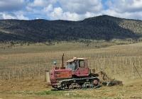 """Трактор Т-150 #16440 КН на пропашке виноградника. Крым, виноградники совхоза """"Морское"""""""