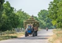 Трактор ЮМЗ-6* с прицепом 2 ПТС-4* на перевозке кормовой травяной массы. Одесская область, Ренийский район, с. Долинское