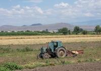 Трактор Т-40АМ в агрегате с картофелекопателем КТН–2В. Армения, марз Армавир
