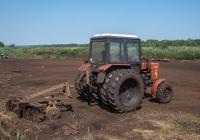 Трактор Беларус-82.1 (МТЗ-82.1) с дисковой бороной. Черкасская область, Ирдынское торфопредприятие