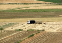 Грузовой автомобиль Volvo FH12* и трактор-погрузчик. Израиль, Кирьят-Тивон