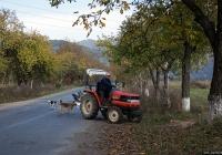 Трактор Kubota GL-25 #05300 АО. Закарпатская область, Иршавский район, Долгое, улица Сечевых Cтрельцов