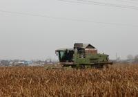 Зерноуборочный комбайн Claas Mega 360 # 6360 ЕУ 31 на уборке кукурузы. Белгородская область, г. Валуйки, улица Суржикова