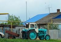 Трактор ЮМЗ-6 # 9082 ВВ 36. Воронежская область, Россошанский район, с. Терновка