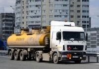 Седельный тягач МАЗ-5440А9 #А 550 РР 159 с полуприцепом НефАЗ. Тюмень, улица Федюнинского