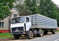 МАЗ-5433  #АЕ 6824-6 с полуприцепом-скотовозом. Могилёвская область, г.Климовичи