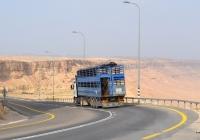Двухэтажный полуприцеп для перевозки крупного рогатого скота.. Израиль, Южный круг, шоссе 40