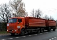 Зерновоз 68901E на шасси КамАЗ-65117 с прицепом  #Н 919 ЕН 32 . Россия, Брянская область, Унеча