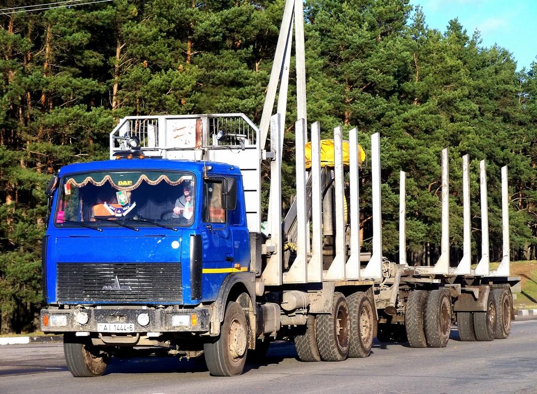 Автопоезд-сортиментовоз в составе МАЗ-6303А8-328 #АI 1444-6 и двухосного прицепа  . Беларусь, Могилёвская область, Костюковичи