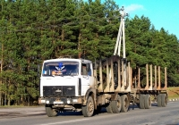 Автопоезд-сортиментовоз в составе МАЗ-6303А8-328 #АА 6738-6 и двухосного прицепа. Беларусь, Могилёвская область, Костюковичи