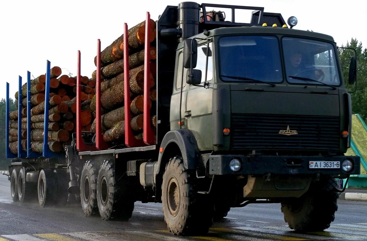 Автопоезд-сортиментовоз на базе МАЗ-6317X9-465 #АI 3631-6 и трёхосного прицепа. Беларусь, Могилёвская область, Костюковичи