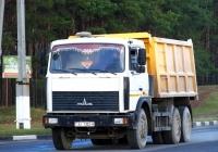 Самосвал МАЗ-5516  #АI 1352-6. Беларусь, Могилёвская область, Костюковичи