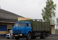 Автомобиль МАЗ-5335 # М 595 УР 31. Белгородская область, Старооскольский район, с. Городище