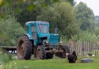 Трактор Т-40АМ. Ровенская область, Зареченский район, с. Млынок