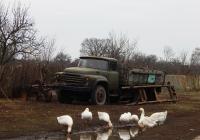 Бортовой автомобиль ЗиЛ-431410. Белгородская область, Красногвардейский район, с. Верхососна