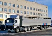 Седельный тягач МАЗ-6422* с полуприцепом-скотовозом #АВ 0400-6. Беларусь, Могилёвская область, Хотимск