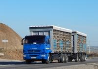 Фургон для перевозки живой птицы Тонар-5742 на шасси КамАЗ-65117 # О 968 НС 31. Белгородская область, г. Валуйки, объездная дорога