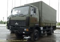 """Грузовик МАЗ-530905. Минск. """"Милекс-2009"""""""
