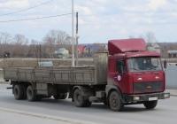 Седельный тягач МАЗ-54323-032 #Н 466 ЕВ 45. Курган, улица Климова