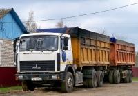 Самосвал МАЗ-5516 #AI 1473-6. Беларусь, Могилёвская область, Краснополье