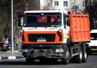 Самосвал МАЗ-6501 #АЕ 9420-6. Беларусь, Могилёвская область, Кричев