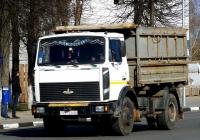 Самосвал МАЗ-5551 #ТВ 3346. Беларусь, Могилёвская область, Кричев