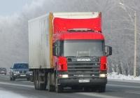 Седельный тягач Scania P340 #Р 150 АТ 116. Новосибирская область, Бердск, Барнаульская улица