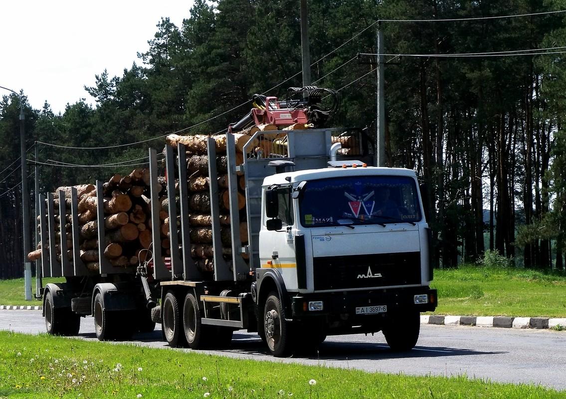 Сортиментовоз на шасси МАЗ-6303  #AI 3697-6. Беларусь, Могилёвская область, Костюковичи