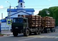 Лесовоз на шасси МАЗ-6317 #АЕ 3406-6. Беларусь, Могилёвская область, Чериков