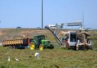 Томатоуборочный комбайн FMC и трактор John Deere 7320. Израиль, Хайфский округ