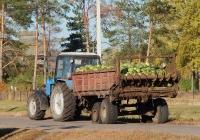 Трактор Беларус-1221* # 2180 ЕК 31 с разбрасывателем органических удобрений. Воронежская область, Ольховатский район, с. Назаровка