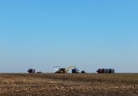 Погрузка корней сахарной свеклы. Белгородская область, Алексеевский район, Алейниковский сельский округ
