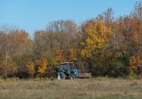 Траншейный экскаватор ЭТЦ-1609 на базе трактора МТЗ-80. Украина, Запорожская область, Ореховский район