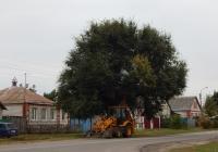 Экскаватор-погрузчик JCB 3CX # 4553 ЕР 31. Белгородская область, г. Алексеевка, ул. Комсомольская