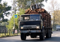 Лесовоз на базе КамАЗ-4310 #У 809 ВВ 60. Псков, Рижский проспект