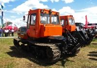 Гусеничный трактор производства Алтайлесмаш. Алтайский край, пав