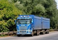 Бортовой грузовик  Scania R580 #АХ 4244 СХ. Харьковская область, г. Чугуев, автотрасса М-03