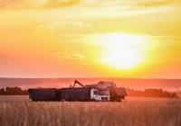 Автопоезд-зерновоз с тягачом на шасси MAN  и зерноуборочный комбайн Claas на уборке зерновых. Харьковская область, Русские Тишки