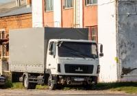 грузовой автомобиль МАЗ-4370* #Е368РО33. Чувашия, г. Чебоксары, ул. Калинина