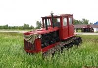 Трактор ДТ-54. Алтайский край, Павловский район, в окрестностях посёлка Прутской