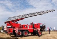Пожарная автолестница АЛ-30 (4310) ПМ-512, #8583Ч1. Харьковская область, аэродром «Коротич»