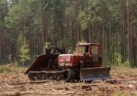 Трактор трелевочный ТДТ-55А. Псковская область, Великолукский район, в окресностях деревни Урицкое
