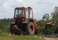 Трактор Т-25 #5356 ПС. Псковская область, Бежаницкий район, Фишнево